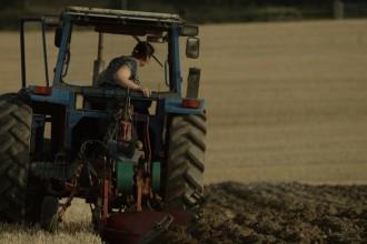 Queen-of-the-Plough-1050x590