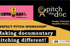 PERFECT PITCH – WAYS OF PITCHING YOUR DOCS